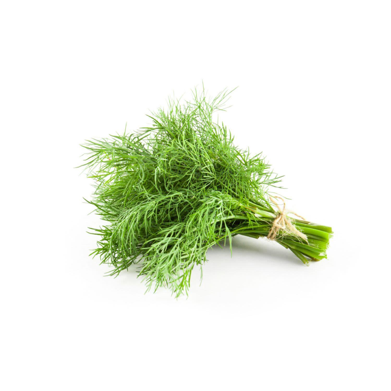 Dill Fresh Herb, 1 Each
