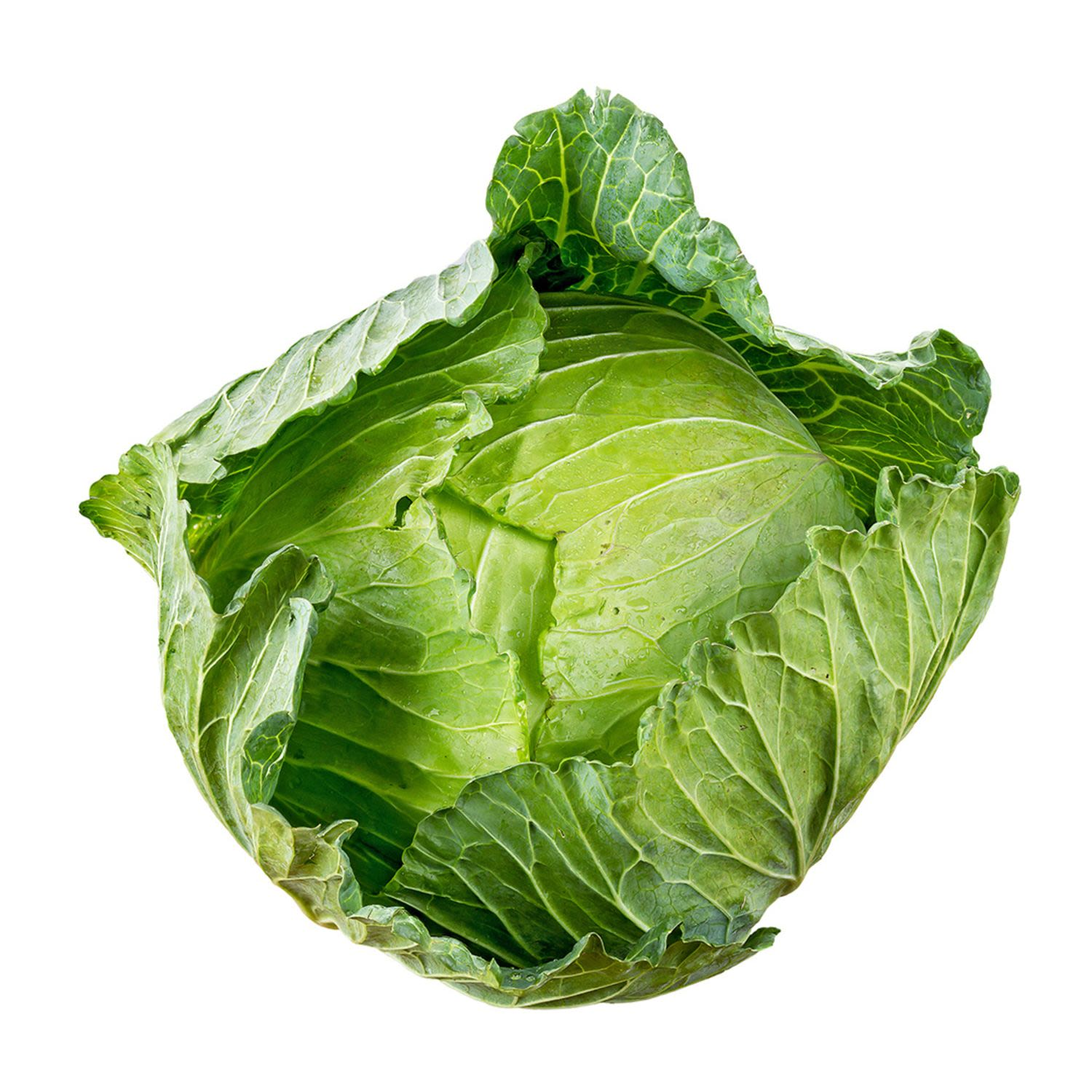 Cabbage Green Whole, 1 Each