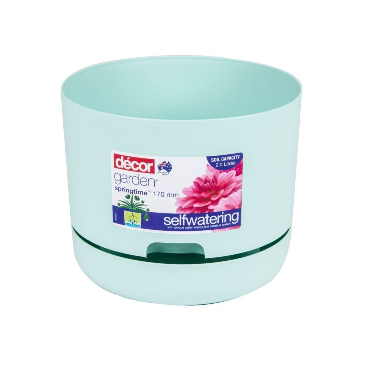 Decor Garden Springtime Self Watering Pot Mint 170mm, 1 Each